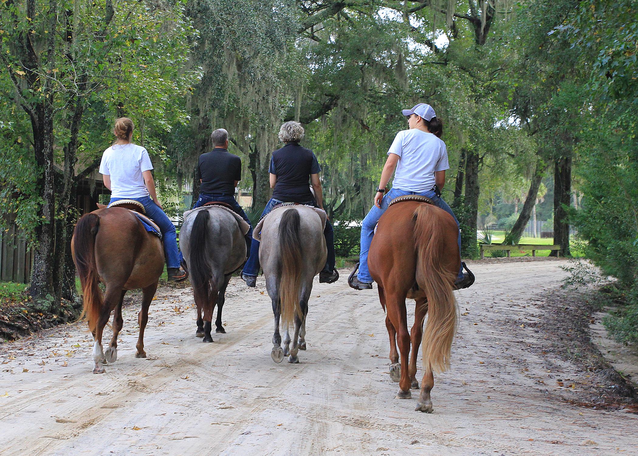 White Oak horses 209 b